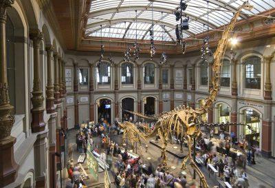 Sauriersaal im Lichthof des Museums für Naturkunde Berlin