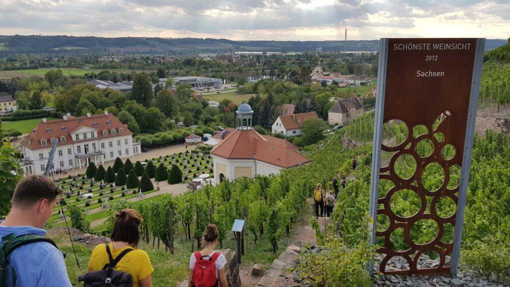 Schönste Weinsicht 2012 auf das Belvedere